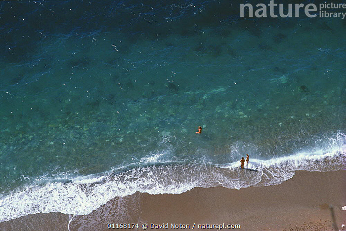 Aerial view of people on the beach, Durdle Door, Dorset, England, UK  ,  AERIALS,BEACHES,COASTS,EUROPE,LANDSCAPES,PEOPLE,SAND,UK,WATER,WAVES,United Kingdom,British,ENGLAND,,Dorset and East Devon Coast, UNESCO World Heritage Site,  ,  David Noton