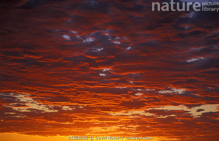 Twilight sky, Namibia  ,  CLOUDS,DRAMATIC,LANDSCAPES,SKIES,SOUTHERN AFRICA,SUNSET,Weather  ,  David Noton