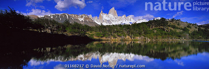 Mount Fitzroy reflected in Lago de los Pantos, Patagonia, Argentina  ,  LAKES,LANDSCAPES,MOUNTAINS,PANORAMIC,REFLECTIONS,SNOW,SOUTH AMERICA,WATER,SOUTH-AMERICA  ,  David Noton
