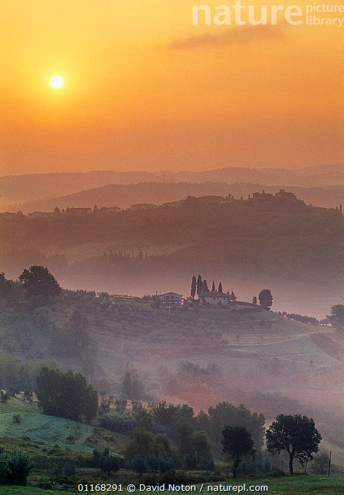 Misty dawn nr Barberino Val d'Elsa, Chianti region, Tuscany, Italy  ,  BUILDINGS,COUNTRYSIDE,EUROPE,HILLS,ITALY,LANDSCAPES,MIST,SUNRISE,VERTICAL  ,  David Noton