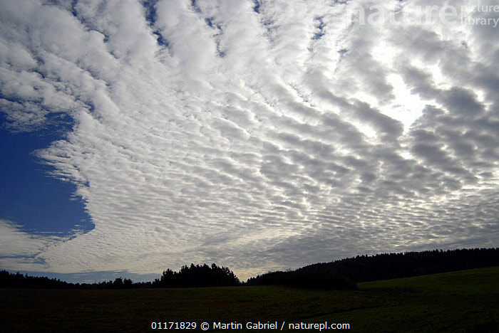 Fishbone-like cloud formation in late october, Neumarkt county, Bavaria, Germany  ,  CLOUDS,EUROPE,GERMANY,PATTERNS,SKIES,SKY,WEATHER  ,  Martin Gabriel