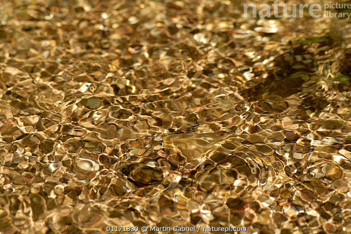 Clear spring water creating patterns while flowing over pebbles, Bavaria, Germany  ,  ABSTRACT,ARTY,EUROPE,FRESHWATER,GERMANY,RIVERS,WATER  ,  Martin Gabriel