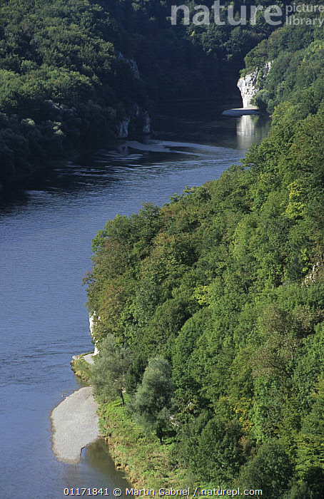 The Danube (Donau) Canyon with Danube River, gravel bank and limestone rock, Kelheim county, Bavaria, Germany  ,  EUROPE,GERMANY,LANDSCAPES,RIVERS,VERTICAL  ,  Martin Gabriel