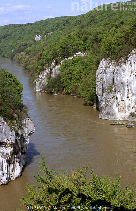 The Danube Canyon, nature conservation area Weltenburger Enge, Kelheim county, Bavaria, Germany  ,  AERIALS,CLIFFS,EUROPE,GERMANY,LANDSCAPES,RIVERS,VERTICAL,Geology  ,  Martin Gabriel