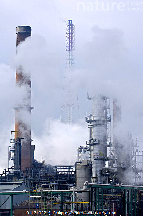 Chimneys and smoke from oil refinery in Antwerp harbour, Belgium  ,  BELGIUM,BUILDINGS,CHIMNEY,CHIMNEYS,CLIMATE,ENERGY,ENVIRONMENT,ENVIRONMENTAL,EUROPE,FACTORIES,GLOBAL WARMING,INDUSTRIAL,INDUSTRY,POLLUTION,SMOKE,VERTICAL  ,  Philippe Clement