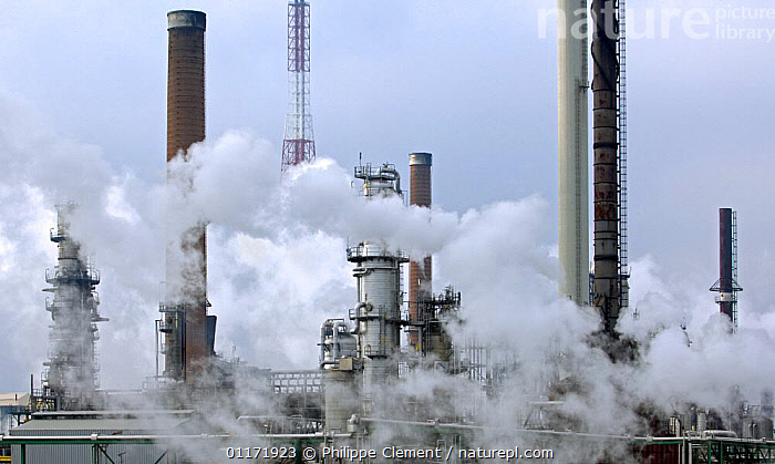 Chimneys and smoke from oil refinery in Antwerp harbour, Belgium  ,  BELGIUM,BUILDINGS,CHIMNEY,CHIMNEYS,CLIMATE,ENERGY,ENVIRONMENT,ENVIRONMENTAL,EUROPE,FACTORIES,GLOBAL WARMING,INDUSTRIAL,INDUSTRY,POLLUTION,SMOKE  ,  Philippe Clement