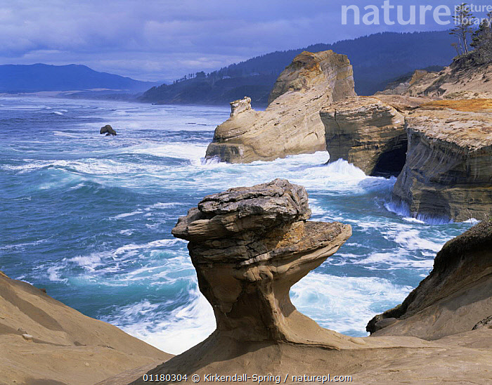 Sea surf against sandstone cliffs and rock formationa on the shore at Cape Kiwanda State Park, Oregon, USA  ,  CLIFFS,COASTS,EROSION,LANDSCAPES,NORTH AMERICA,NORTH AMERICA,OREGON,RESERVE,USA,WATER,Geology  ,  Kirkendall-Spring