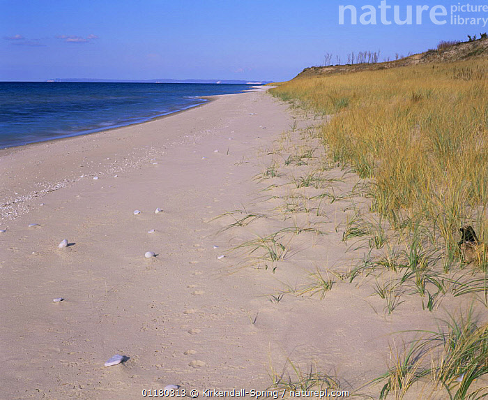 Shoreline of Lake Michigan at Sleeping Bear Dunes, Sleeping Bear Dunes NP, Michigan, USA  ,  BEACHES,GRASSES,LAKES,LANDSCAPES,MICHIGAN,NORTH AMERICA,NORTH AMERICA,SAND DUNES,USA,WATER,Deserts  ,  Kirkendall-Spring