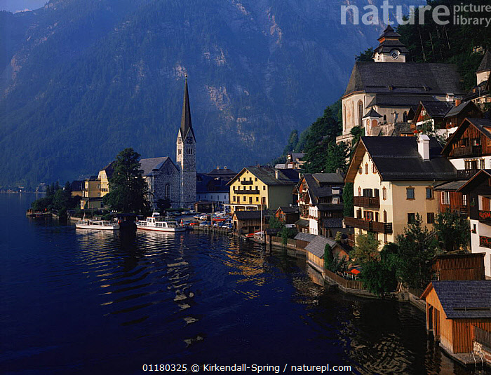 Lakeside village of Hallstatt with mountains in the background, Austria, Europe, AUSTRIA,BOATS,BUILDINGS,CHURCHES,EUROPE,HOUSES,LAKES,LANDSCAPES,MOUNTAINS,PEACEFUL,TOWNS,TREES,VILLAGES,WATER,Concepts,Plants, Kirkendall-Spring