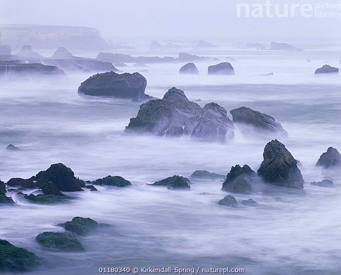 Long exposure of the view across Spooner's Cove in the mist, Montana De Oro State Park, California, USA, ATMOSPHERIC,BEACHES,CLIFFS,COASTS,EROSION,LANDSCAPES,MIST,NORTH AMERICA,NORTH AMERICA,ROCK FORMATIONS,ROCKS,TIDES,USA,WATER,Geology,WEATHER, Kirkendall-Spring