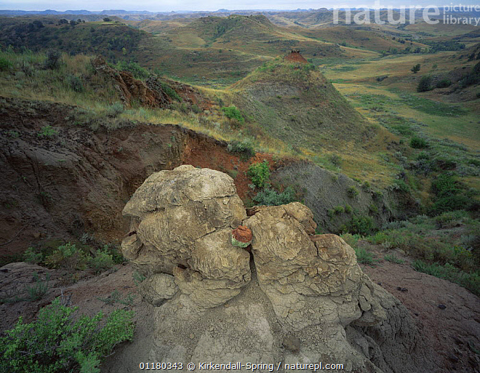 Clay formation in the prairies near Round Up Camp, Theodore Roosevelt NP, North Dakota, USA, CLAY,EROSION,GEOLOGY,GRASSES,LANDSCAPES,MEADOWS,NORTH AMERICA,NORTH AMERICA,PRAIRIES,RESERVE,ROCK FORMATIONS,ROCKS,SHRUBS,USA,Plants, Kirkendall-Spring