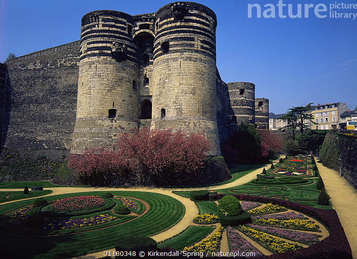 Castle / Chateau d'Angers fortress and gardens, Angers, France, Europe, BUILDINGS,CASTLES,EUROPE,FLOWERS,FRANCE,GARDENS,HORTICULTURE,LANDSCAPES,PATTERNS,PLANTS, Kirkendall-Spring