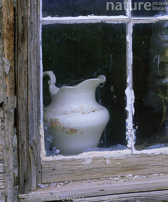 Old porcelain jug in the window of Olmstead Cabin, Olmstead Place Heritage Area, Washington, USA, ARTY,BUILDINGS,HOUSES,NORTH AMERICA,NORTH AMERICA,POTTERY,RESERVE,USA,VERTICAL,WINDOWS, Kirkendall-Spring