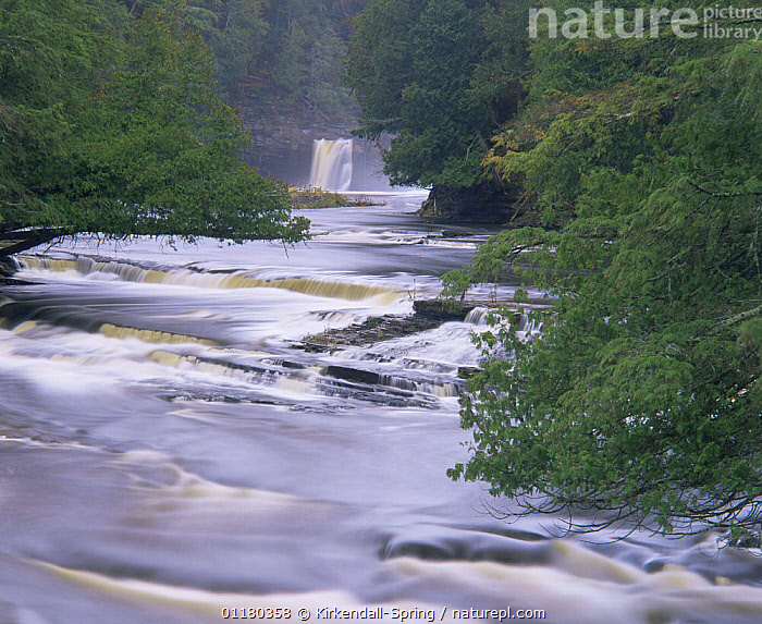 Waterfall on the Presque Isle River, Porcupine Mountains Wilderness State Park, Michigan, USA, LANDSCAPES,NORTH AMERICA,NORTH AMERICA,RESERVE,RIVERS,TREES,USA,WATER,WATERFALLS,Plants, Kirkendall-Spring