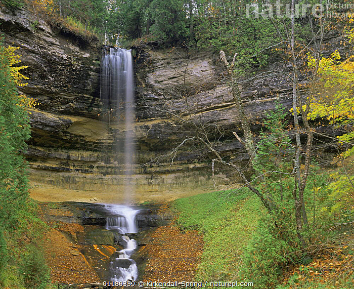 Munising Falls in Pictured Rocks National Lakeshore, Michigan, USA, LANDSCAPES,NORTH AMERICA,NORTH AMERICA,RESERVE,ROCK FORMATIONS,ROCKS,TREES,USA,WATER,WATERFALLS,Geology,Plants, Kirkendall-Spring