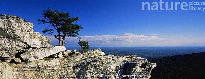 Top of Hanging Rock, Hanging Rock State Park, North Carolina, USA  ,  LANDSCAPES,MOUNTAINS,NORTH AMERICA,NORTH AMERICA,PANORAMIC,RESERVE,ROCK FORMATIONS,ROCKS,TREES,USA,Geology,Plants  ,  Kirkendall-Spring