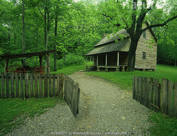 View of Tipton Place in Cades Cove, Great Smoky Mountains NP, Tennessee, USA, BUILDINGS,FENCES,FORESTS,GATES,HISTORIC,HOUSES,LANDSCAPES,NORTH AMERICA,NORTH AMERICA,RESERVE,TREES,USA,WOODLANDS,Plants, Kirkendall-Spring