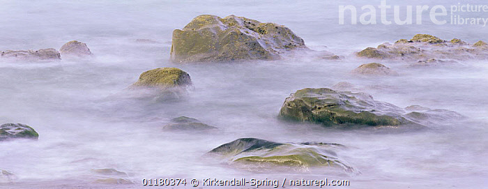 Rocks in the surf at Hole-in-the-Wall on the Pacific Coast, Olympic NP, Washington, USA, COASTS,LANDSCAPES,NORTH AMERICA,NORTH AMERICA,PACIFIC,PANORAMIC,RESERVE,ROCKS,SEA,SURF,USA, Kirkendall-Spring