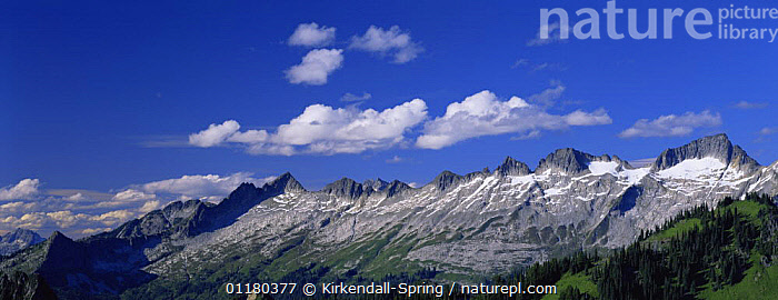 View of El Dorado massif from the Hidden Lake Peaks Trail in the North Cascades, Washington USA, LANDSCAPES,MOUNTAINS,NORTH AMERICA,NORTH AMERICA,PANORAMIC,RESERVE,TREES,USA,Plants, Kirkendall-Spring