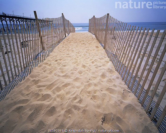 Fenced pathway leading down to the Atlantic Ocean, Carolina Beach, North Carolina, USA, ATLANTIC,BEACHES,COASTS,FENCES,LANDSCAPES,NORTH AMERICA,NORTH AMERICA,PATHS,SAND,USA,WATER, Kirkendall-Spring