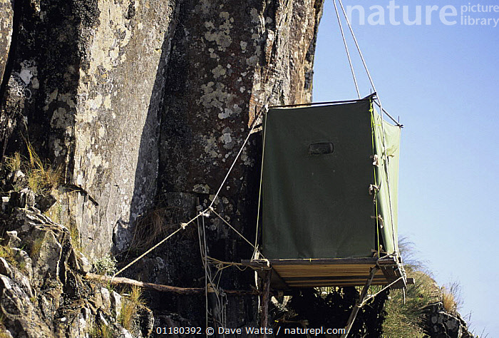 Photographers hide at Peregrine nest site, Tasmania, Australia, AUSTRALIA,BIRDS,WILDLIFE PHOTOGRAPHY, Dave Watts