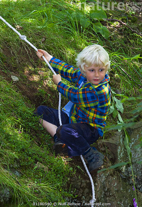 Young boy using rope to climb a woodland bank, Letham, Fife, Scotland, UK, CHILD,CHILDHOOD,CHILDREN,EUROPE,OUTDOORS,PEOPLE,REWILDING,UK,VERTICAL,United Kingdom,British, Niall Benvie