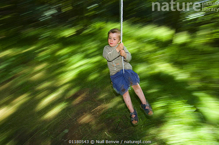 Young boy swinging through the forest, Letham, Fife, Scotland, UK, July  ,  ABSTRACTS,CHILD,CHILDHOOD,CHILDREN,EUROPE,FOREST,FUN,MOVEMENT,OUTDOORS,PEOPLE,PLAYING,REWILDING,United Kingdom,British  ,  Niall Benvie