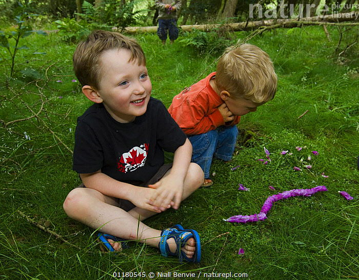 Young boys making a Foxglove flower snake in the forest, Letham, Fife, Scotland, UK, CHILD,CHILDHOOD,CHILDREN,DICOTYLEDONS,EUROPE,FOXGLOVE,FUN,HAPPY,OUTDOORS,PEOPLE,PLANTS,REWILDING,SCOTLAND,SCROPHULARICAEA,UK,United Kingdom,British, Niall Benvie
