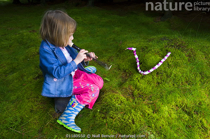 Young girl 'charming' a snake made of Foxglove flowers, Scotland, UK, CHILD,CHILDHOOD,CHILDREN,CONCEPTS,FOXGLOVE,FUN,GIRL,OUTDOORS,PEOPLE,PLAY,PLAYING,REWILDING,SCOTLAND,SNAKE,YOUNG,Europe,Communication, Niall Benvie