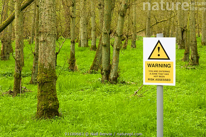Spoof hazard sign about Risk assessment in the forest, Scotland, UK, 2007, HUMOROUS,SCOTLAND,SIGNS,UK,WOODLANDS,Europe,United Kingdom,Concepts,British, Niall Benvie