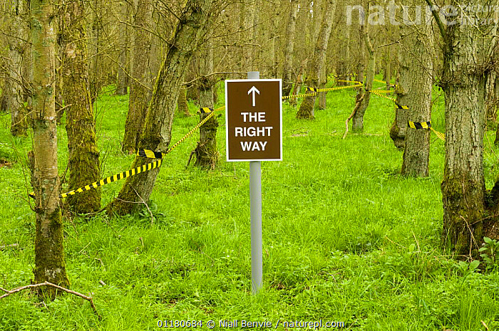 Spoof tourist safety sign in the forest, Scotland, UK, 2007, HUMOROUS,SCOTLAND,SIGNS,UK,WOODLANDS,Europe,United Kingdom,Concepts,British, Niall Benvie