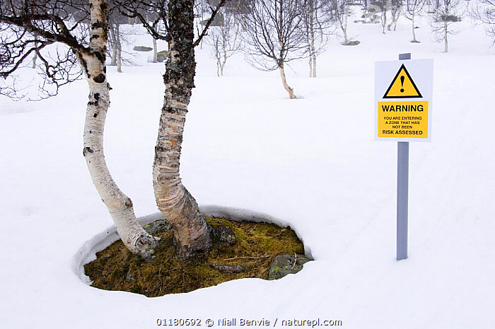 Spoof risk assessment hazard sign in the forest, Norway, EUROPE,HUMOROUS,NORWAY,SCANDINAVIA,SIGNS,WINTER,WOODLANDS,Concepts, Scandinavia, Niall Benvie