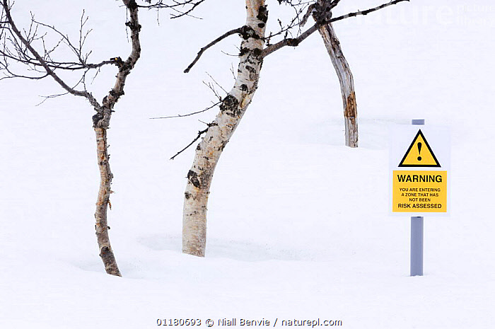 Spoof risk assesment hazard sign in the forest, Norway 2007, EUROPE,HUMOROUS,NORWAY,SCANDINAVIA,SIGNS,SNOW,WINTER,WOODLANDS,Concepts, Scandinavia, Niall Benvie