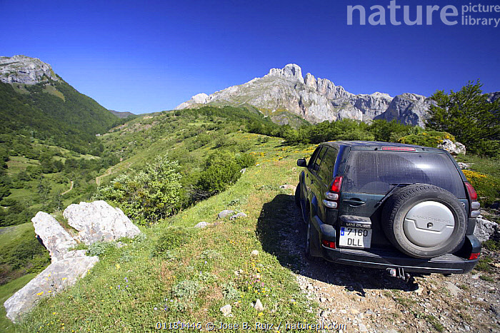 Off-road jeep driving up mountain track, Picos de Europa, Asturias, Spain  ,  EUROPE,LANDSCAPES,LEISURE,MOUNTAINS,SPAIN,VEHICLES  ,  Jose B. Ruiz
