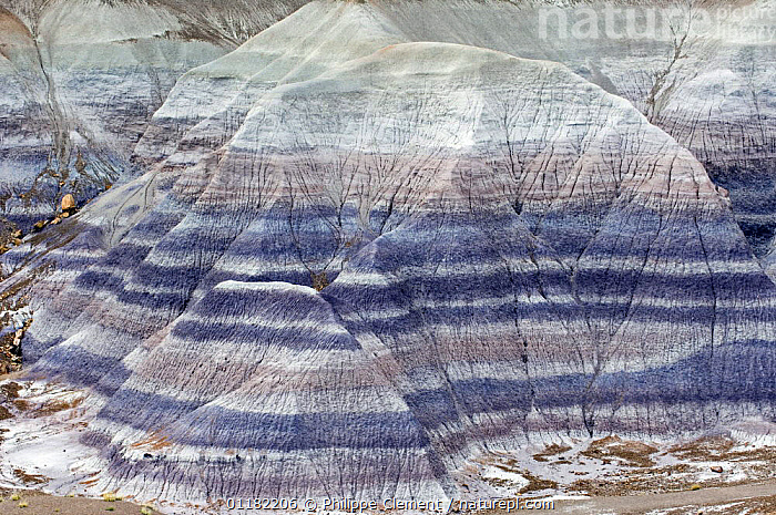 Blue, grey, white, lavender and green striated cones, Blue Mesa, Painted Desert and Petrified Forest, Arizona, USA  ,  COLOURFUL,DESERTS,EROSION,GEOLOGY,NORTH AMERICA,NORTH AMERICA,RESERVE,ROCK FORMATIONS,ROCKS,STRIPES,USA  ,  Philippe Clement