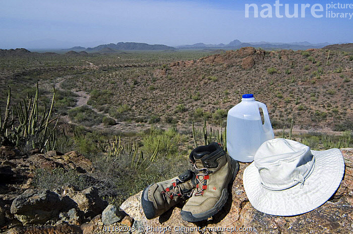 Sturdy boots, a brimmed hat and lots of water is what you need when hiking into the Sonoran desert, Organ Pipe National Monument, Arizona, USA May 2007  ,  CACTUS,DESERTS,HIKING,LANDSCAPES,NORTH AMERICA,NORTH AMERICA,RESERVE,USA  ,  Philippe Clement
