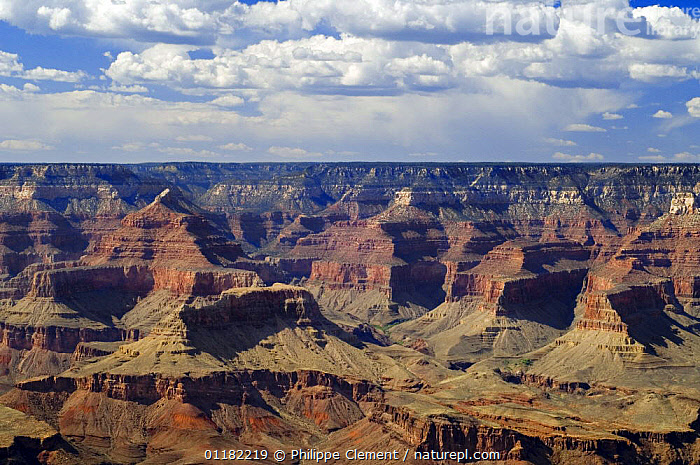 Looking down into Grand Canyon along the Desert View Drive, Grand Canyon NP, Arizona, USA  ,  EROSION,GEOLOGY,LANDMARK,LANDSCAPES,NORTH AMERICA,NORTH AMERICA,RESERVE,ROCK FORMATIONS,ROCKS,USA  ,  Philippe Clement