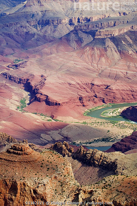 Looking down into Grand Canyon along the Desert View Drive with view of the Colorado River, Grand Canyon NP, Arizona, USA  ,  DESERTS,EROSION,GEOLOGY,NORTH AMERICA,NORTH AMERICA,RESERVE,RIVERS,ROCK FORMATIONS,ROCKS,VERTICAL,USA  ,  Philippe Clement