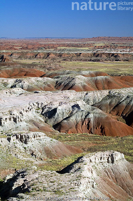 The Painted Desert, part of the Petrified Forest National Park stretches some 50,000 acres of colorful mesas, butes, and badlands, Arizona, USA May 2007  ,  COLOURFUL,GEOLOGY,LANDSCAPES,NORTH AMERICA,NORTH AMERICA,RESERVE,ROCK FORMATIONS,VERTICAL,USA  ,  Philippe Clement