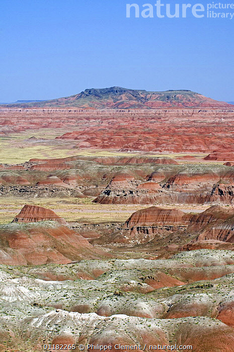 The Painted Desert, part of the Petrified Forest National Park stretches some 50,000 acres of colorful mesas, butes, and badlands, Arizona, USA  ,  COLOURFUL,DESERTS,EROSION,GEOLOGY,NORTH AMERICA,NORTH AMERICA,RESERVE,ROCK FORMATIONS,VERTICAL,USA  ,  Philippe Clement