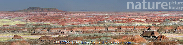 The Painted Desert, part of the Petrified Forest National Park stretches some 50,000 acres of colorful mesas, butes, and badlands, Arizona, USA May 2007  ,  COLOURFUL,DESERTS,GEOLOGY,LANDSCAPES,NORTH AMERICA,NORTH AMERICA,PANORAMIC,RESERVE,ROCK FORMATIONS,USA  ,  Philippe Clement