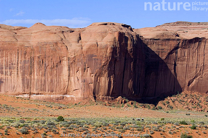 Navajo guide with tourists on horseback in front of Yei Bi Chei, Monument Valley Navajo Tribal Park, Arizona, USA May 2007  ,  CLIFFS,DESERTS,GEOLOGY,LANDSCAPES,NORTH AMERICA,NORTH AMERICA,RESERVE,ROCK FORMATIONS,TOURISM,USA  ,  Philippe Clement