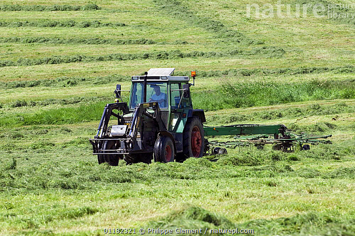 Tractor with mower cutting grass for hay, Luxembourg  ,  AGRICULTURE,EUROPE,FARMING,HARVESTING,LUXEMBOURG  ,  Philippe Clement