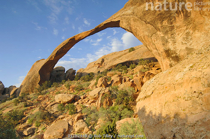 Landscape Arch, Arches NP, Utah, USA  ,  DESERTS,GEOLOGY,INTERESTING,LANDSCAPES,NORTH AMERICA,RESERVE,ROCK FORMATIONS,USA  ,  Rob Tilley