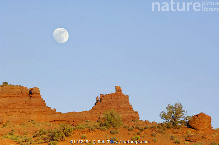 Full moon at Fisher Tower, Moab, Utah, USA  ,  DESERTS,GEOLOGY,LANDSCAPES,NORTH AMERICA,RESERVE,ROCK FORMATIONS,USA  ,  Rob Tilley