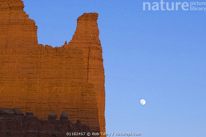 Full moon at Fisher Tower, Moab, Utah, USA  ,  CLIFFS,DESERTS,GEOLOGY,LANDSCAPES,NORTH AMERICA,RESERVE,ROCK FORMATIONS,USA  ,  Rob Tilley
