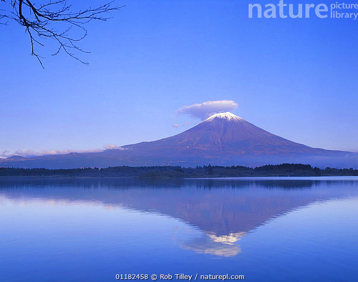 Mt. Fuji with lenticular cloud, Tanuki Lake, Yamanashi, Japan  ,  ASIA,CLOUDS,LAKES,LANDSCAPES,MOUNTAINS,PEACEFUL,REFLECTIONS,VOLCANOES,WATER,Concepts,Weather,Geology  ,  Rob Tilley