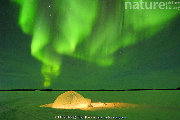 Igloo under northern lights, Northwest Territories, Canada March 2007  ,  ARCTIC,BUILDINGS,CANADA,GREEN,LANDSCAPES,NIGHT,NORTH AMERICA,PEOPLE,SKIES,SNOW,STARS,TUNDRA,WINTER  ,  Eric Baccega