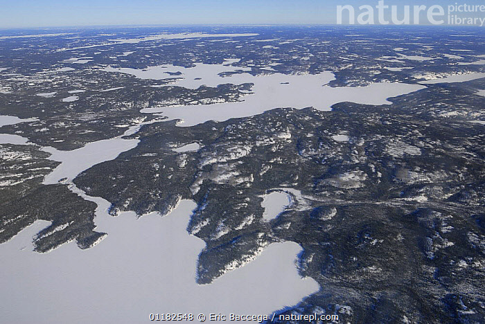 Aerial view of taiga forest and frozen lakes in winter, Northwest Territories, Canada March 2007  ,  AERIALS,ARCTIC,CANADA,FORESTS,LANDSCAPES,NORTH AMERICA,SNOW,TAIGA,TREES,WINTER,Plants  ,  Eric Baccega