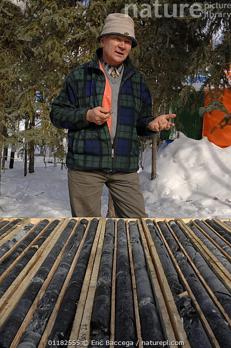 Geologist studying and explaining mineral cores, Northwest Territories, Canada March 2007  ,  CANADA,GEOLOGY,MALES,MAN,NORTH AMERICA,PEOPLE,PORTRAITS,RESEARCH,ROCKS,SCIENCE,SNOW,VERTICAL,WINTER  ,  Eric Baccega